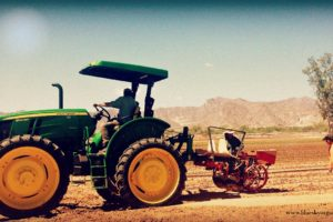 planting with the transplanter