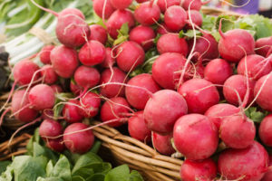 Radishes_in_basket