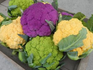 Cauliflower, Cheddar, Grafitti, VitaVerde or Kiwi, 072012 (7)