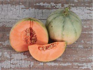 melon-charentais-IMG_9797-(2)