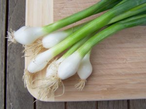 how-to-grow-onions1