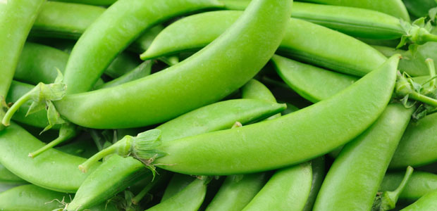 sugar_snap_peas00