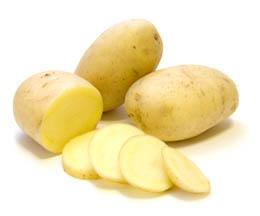 yellow-finn-potato-lg