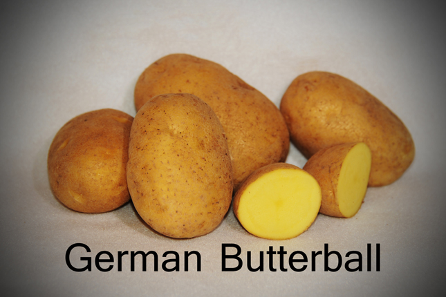 German-Butterball-copy-copy