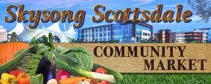 SkysongScottsdale website