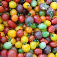 http://blueskyorganicfarms.com/wp-content/uploads/2018/02/Tomatoes.jpg