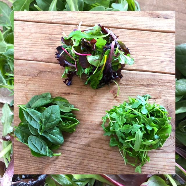 http://blueskyorganicfarms.com/wp-content/uploads/2018/03/Salad_Spinach_Arugula.jpg